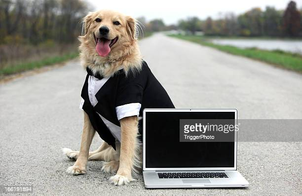 Business-laptop
