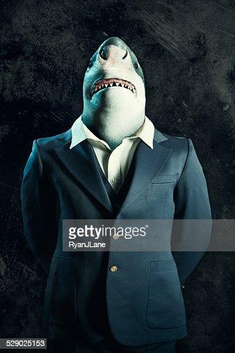 Business Loan Shark
