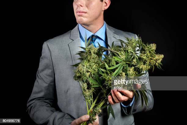 Business man holding a bouquet of cannabis sativa flowers plant