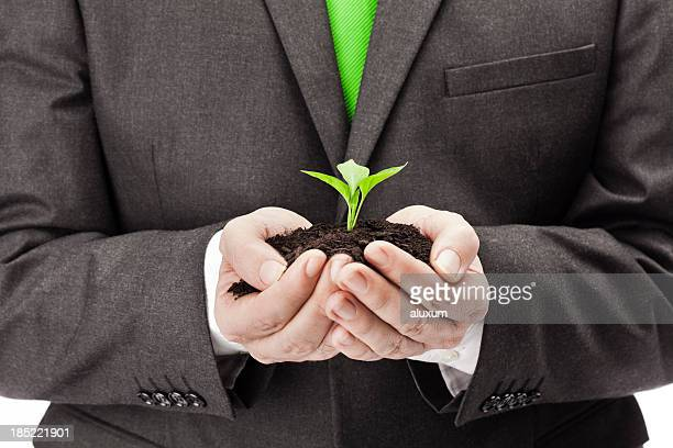A business man holding a new plant