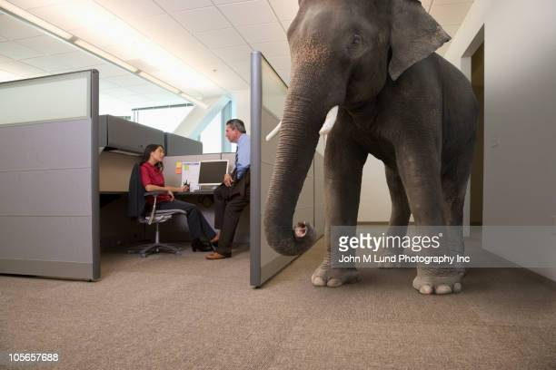 Business people ignoring large elephant in office