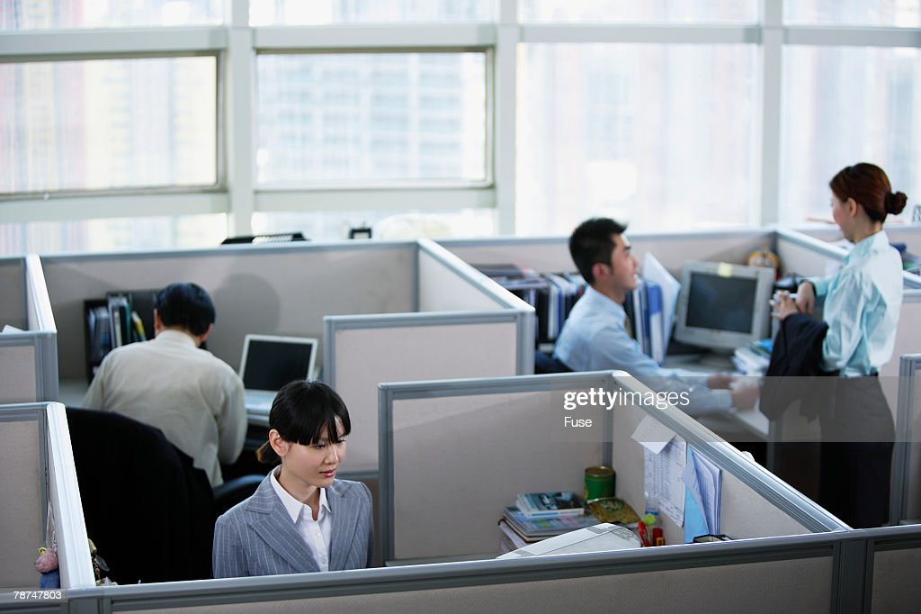 Business People Working in Cubicles