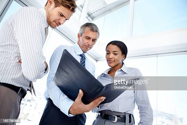 Business professionals studying documents