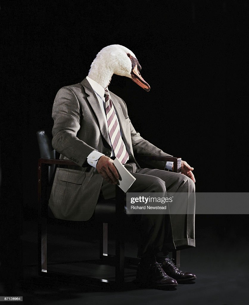Business Swan : Stock Photo