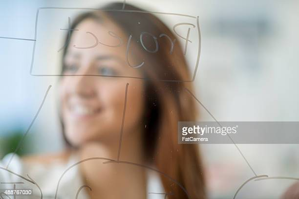 Business Woman Creating Flow Chart