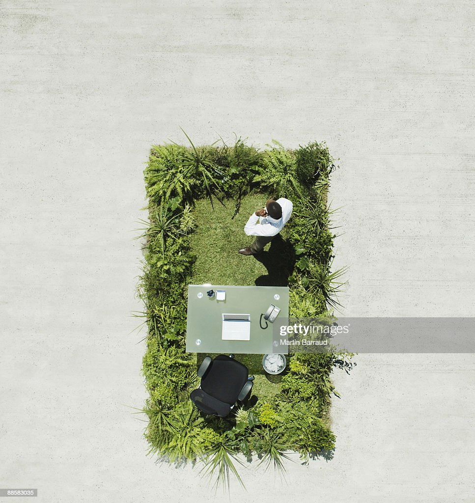 Businessman and desk on lush lawn in cement courtyard : Stock Photo