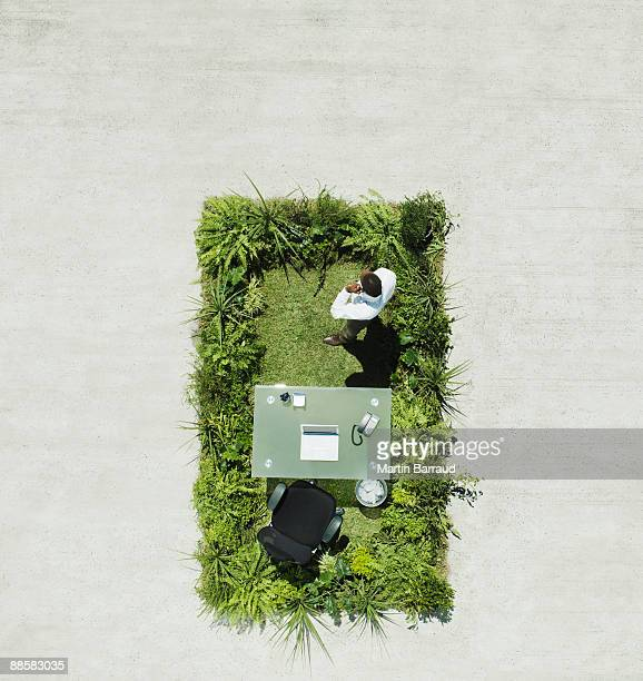 Businessman and desk on lush lawn in cement courtyard