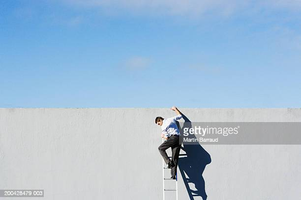 Businessman at top of ladder, holding edge of concrete wall, rear view