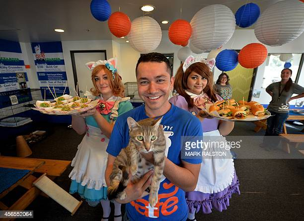 Businessman Carlos Wong with his staff and Simone the cat during the kickstarter opening of the Catfe in Chinatown Los Angeles on October 2 2014 The...