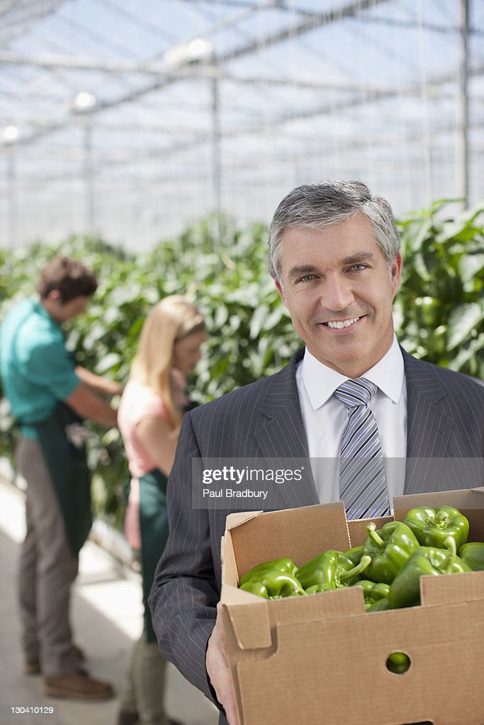 Businessman carrying box of produce in greenhouse : Stock Photo