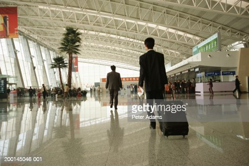 Businessman carrying luggage in airport, rear view