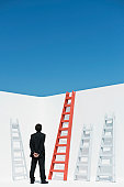 Businessman contemplating ladders, rear view