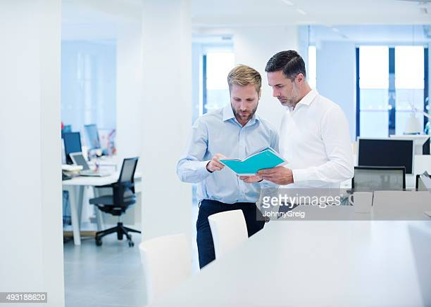 Businessman discussing brochure with colleague