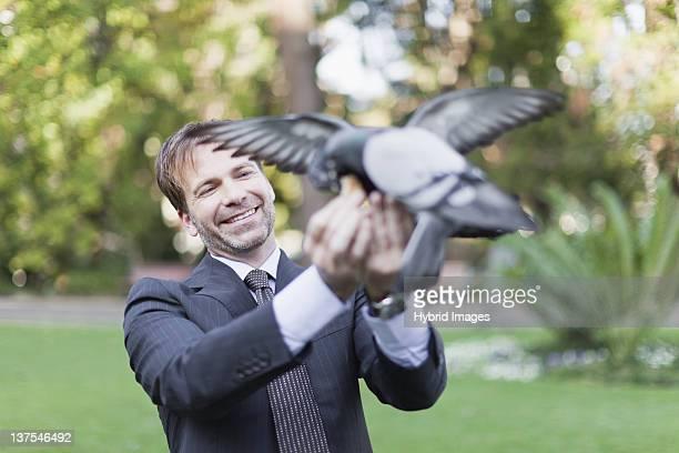 Homme d'affaires s'alimentant les pigeons dans le parc