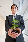 Businessman holding a plant