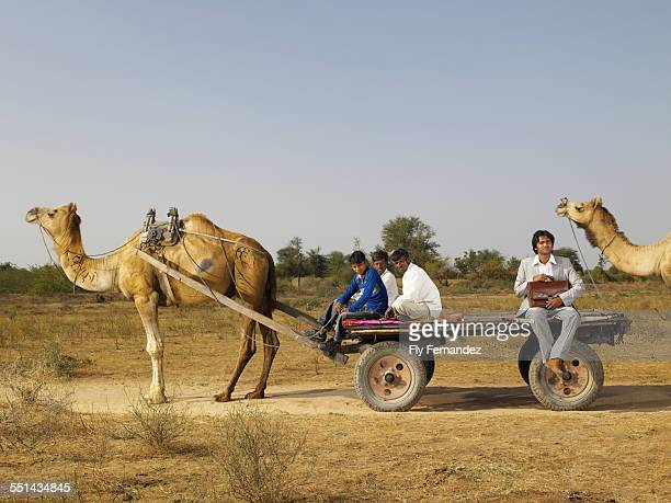 Businessman in Back of Wagon