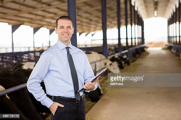 Businessman in Cow Farm