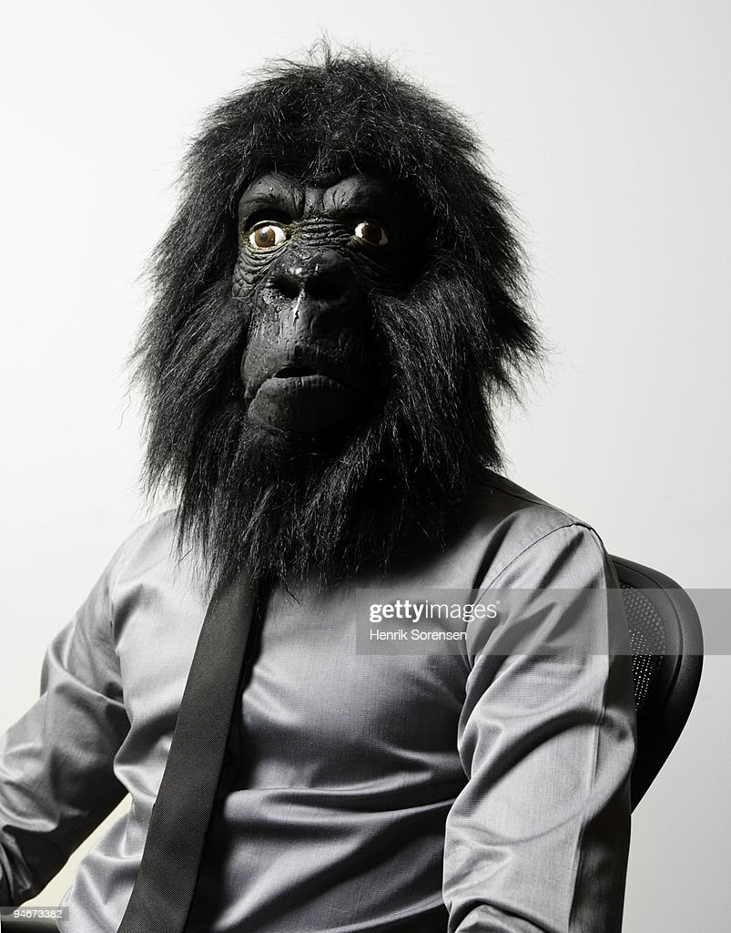 Businessman in office chair in gorilla mask : Stock Photo