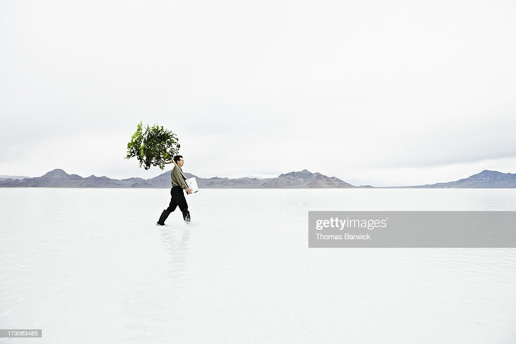 Businessman in shallow water carrying potted tree : Stock Photo
