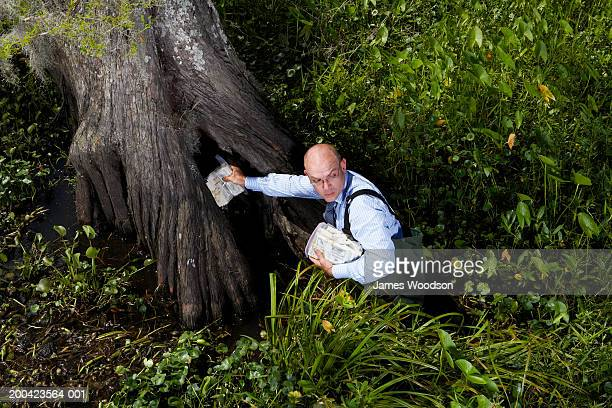 Businessman in swamp with money, looking back, elevated view