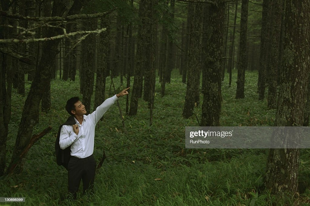 businessman in the forest : Stock Photo