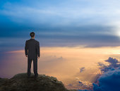 Businessman On A Mountain Top