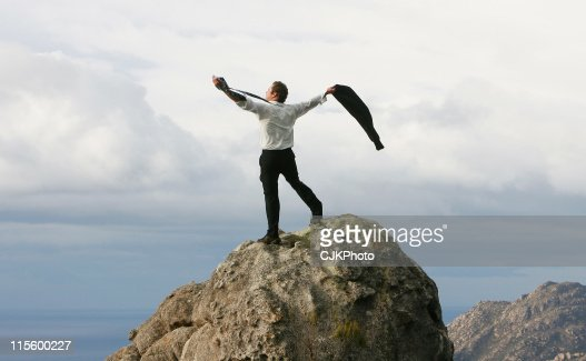 Businessman on the Summit