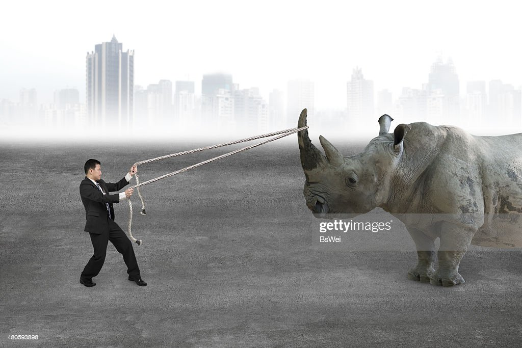Businessman pulling rope against rhinoceros on concrete floor : Stock Photo