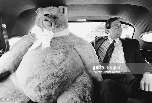 Businessman sitting with giant stuffed bear in back of car