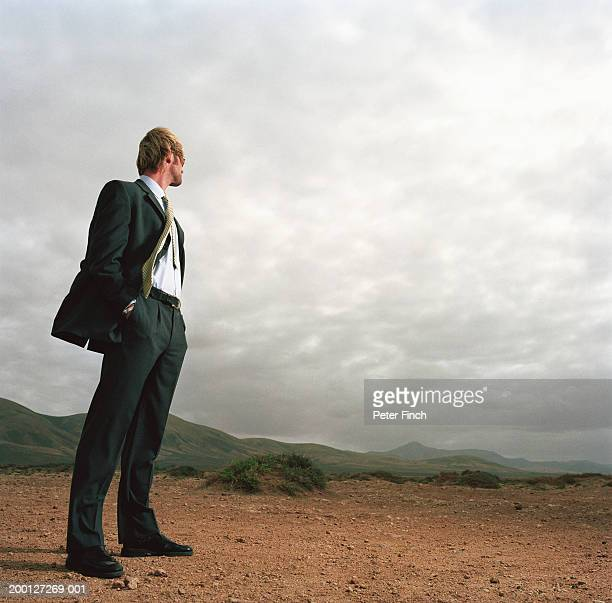 Businessman standing in rugged landscape, low angle view