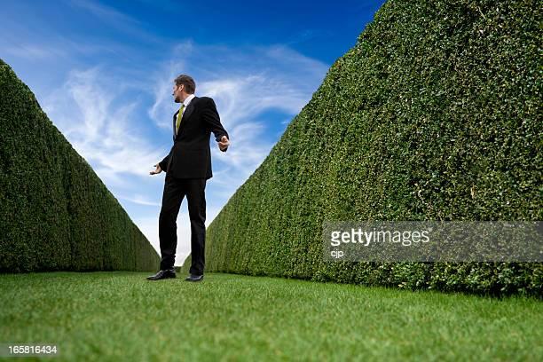 Businessman Trapped in Infinite Garden Maze