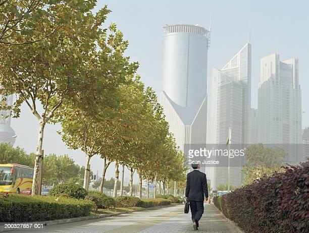 Businessman walking on street, rear view