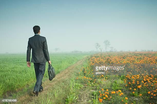 実業家デビッド地平線に向かって歩いてノートパソコンバッグを押します。