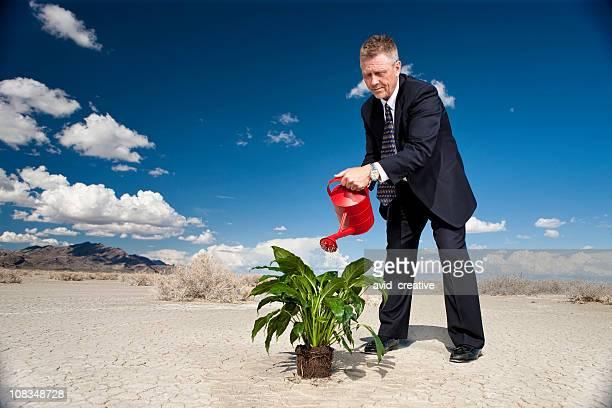 Geschäftsmann gießen Pflanze in der Wüste