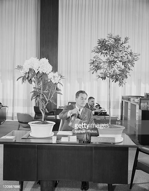 Businessman watering plant in office
