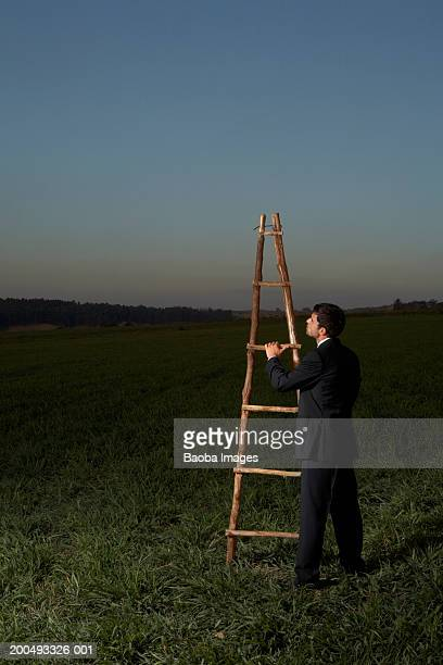 Businessman with ladder in empty field