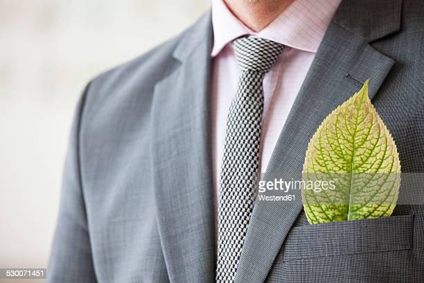 Businessman with leaf in his jacket pocket