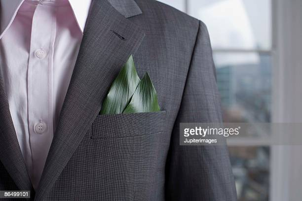 Businessman with plant leaves in pocket