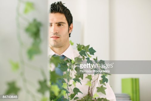 Businessman working in green office : Stock Photo