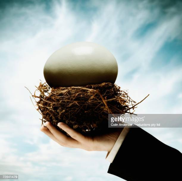 Businessman's hand holding nest with large egg