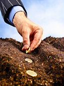 Businessman's hand planting gold coins in soil.