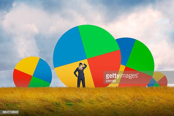 Businesswoman In Grassy Field Looking At Pie Charts