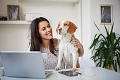 Caucasian businesswoman sitting in home office with her dog