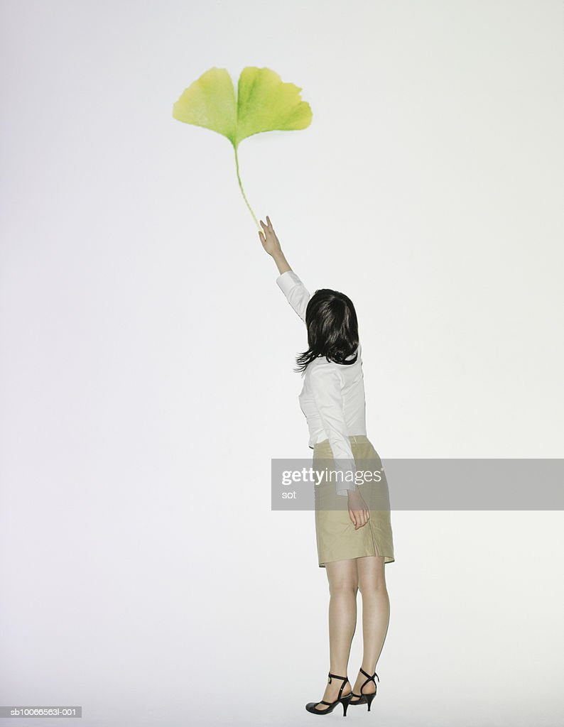 Businesswoman reaching for ginkgo leaf, rear view : Stock Photo