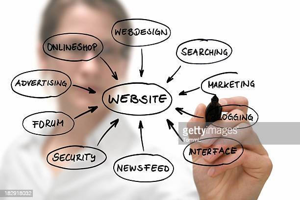 Businesswoman with website diagram