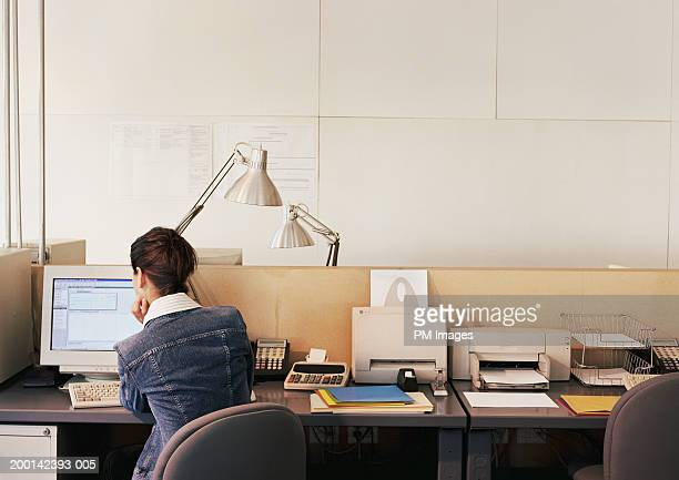 Businesswoman working at computer, rear view