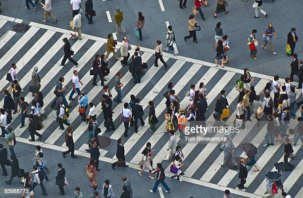busy pedestrian crossing Shibuya