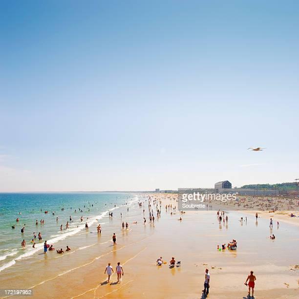 Busy public beach on a clear sunny day