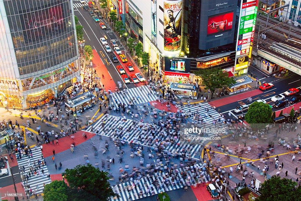 Busy Shibuya Crossing in evening