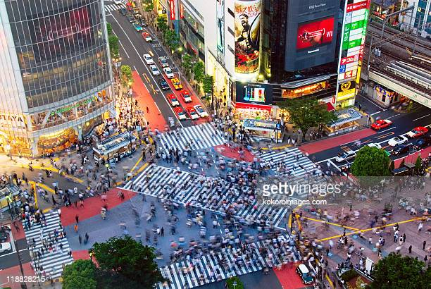 Busy Shibuya Crossing in evening